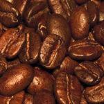 Coffee Plantation in Agaete