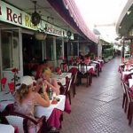 Red Rose Cafe, Puerto Rico