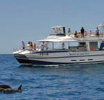 The Hottest Catamaran Trips of 2011